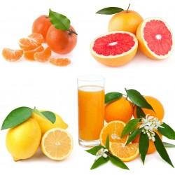 Naranjas de Zumo 8 kg, Mandarinas 3 kg, Limones 2 kg, Pomelos 2 kg - 15 kg