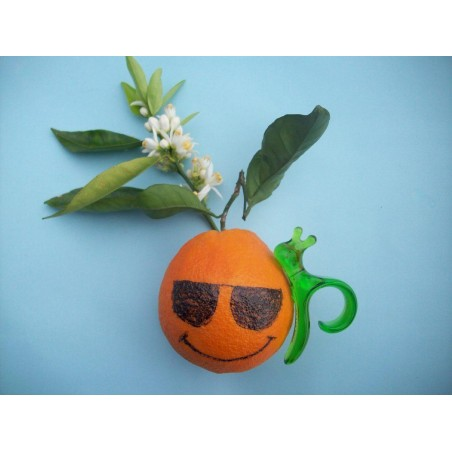 Peeler Orange Manual