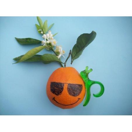 Pelador de Naranjas Manual