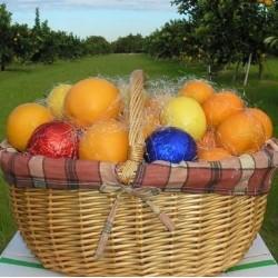 Cesta Especial: Naranjas 7 kg Mandarinas 3 kg -10 Kg. + Limones 3 u