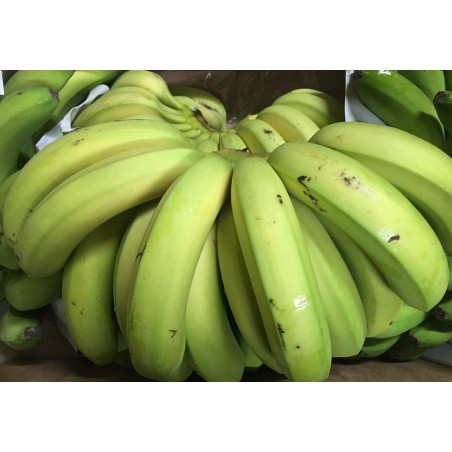 Bananas from the Canary islands 5 kg