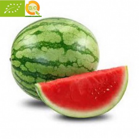 Watermelons Mini 5-6 Eco - 7-9 kg