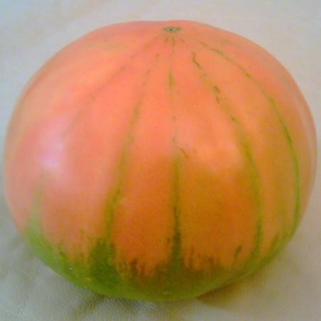 Tomate Valence 5 kg (de la conversion à l'agriculture Biologique)