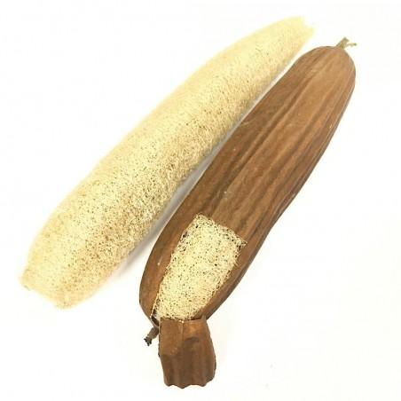 Esponja de Luffa Natural