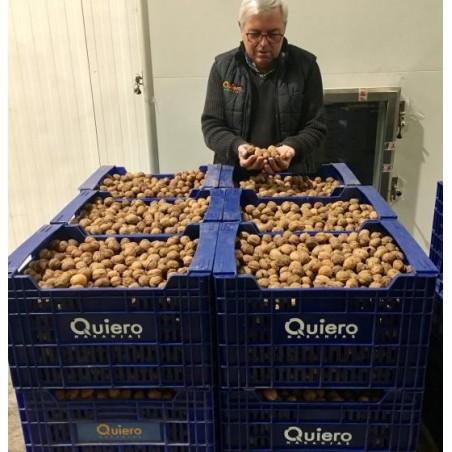 Nueces Ecológicas Españolas 500 g