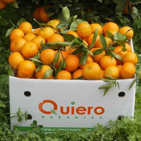 Mandarinas Ecológicas 8 kg, Granadas Ecológicas 2 kg : 10 Kg