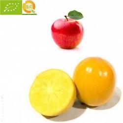Kakis Rojo Brillante y Manzanas Fuji Ecológicas - 5 kg