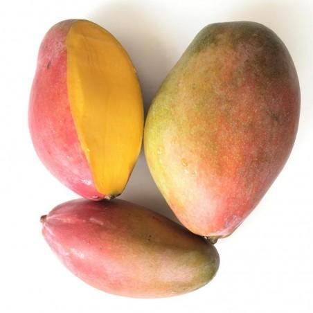 Kiwis, Mangoes 5 kg