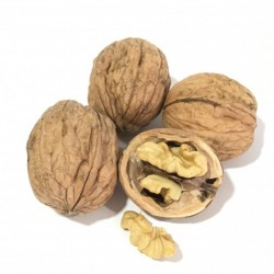 Bio-walnuts from Spanien 500 g