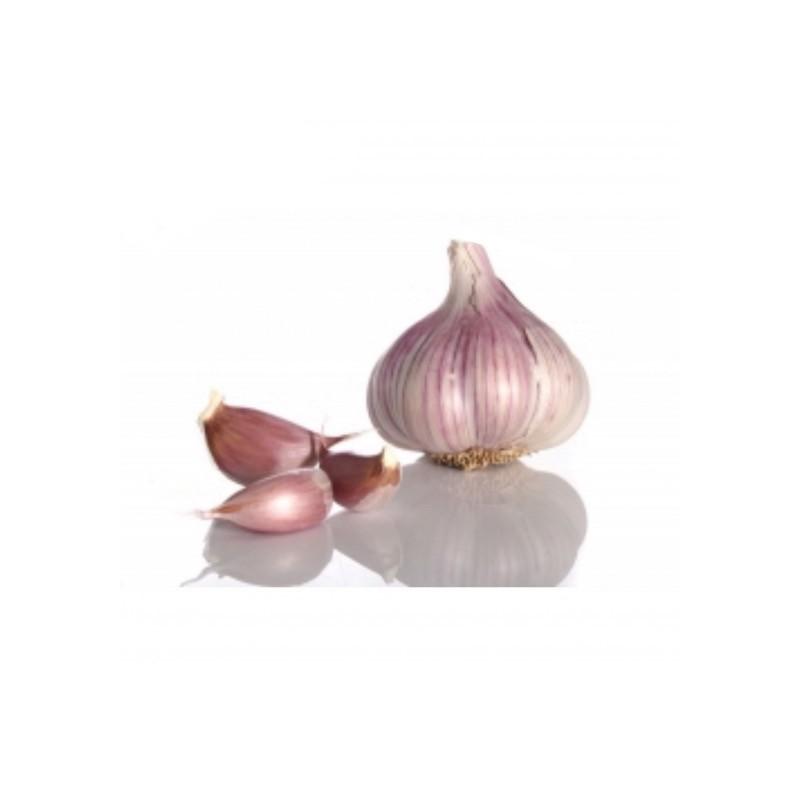 Organic Garlic Purple 240-260 g (ajo morado)