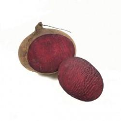 Rote Bio-Bete (2-3 Stück)...