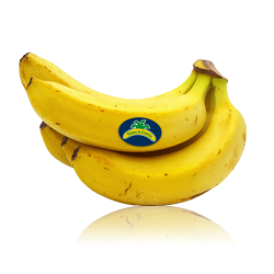 Organic Bananas from the...