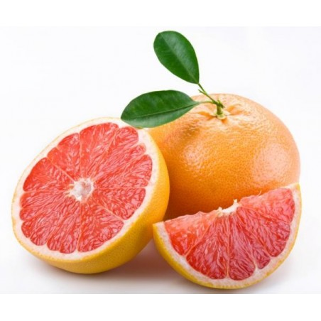 Organic Grapefruit Star Ruby 15 kg (pomelos)
