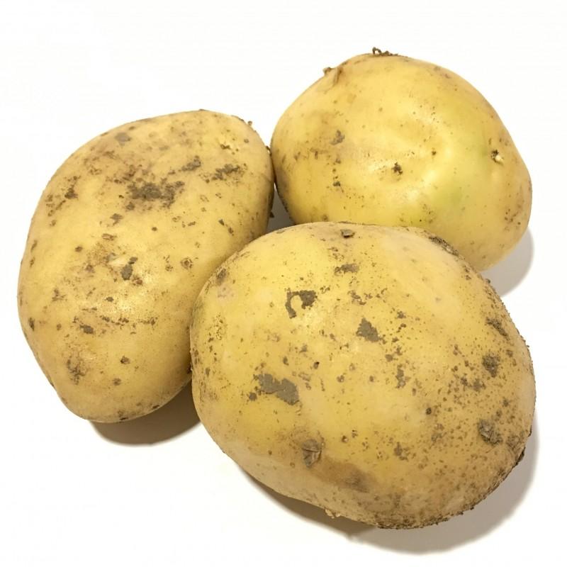 Organic Potatoes 5 kg