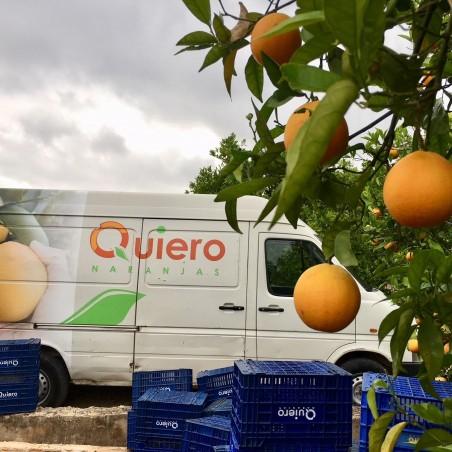 Naranjas Ecológicas de Mesa 10 kg, Mandarinas 10 kg (20 Kg)