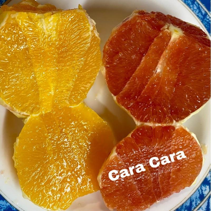 Naranja Roja (Cara Cara) 5 Kg