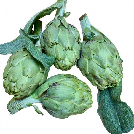 Artichoke 5 kg (alcachofas)