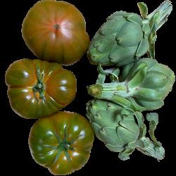 Tomate, L'artichaut - 5 kg...