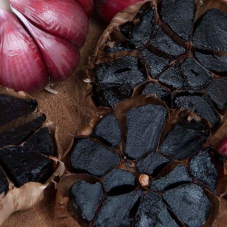 Noir Purples ail Bio 3 têtes (ajo negro)