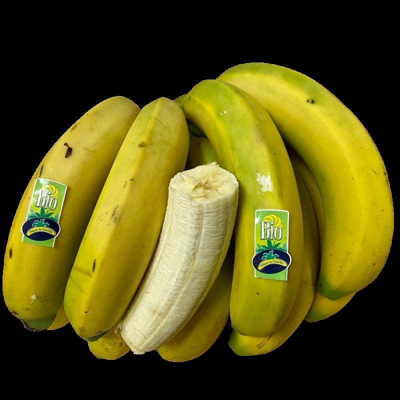 Bio-Plátanos (kanarische Bananen) 5 kg