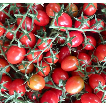 Tomate Ecológico Cherry 500 g