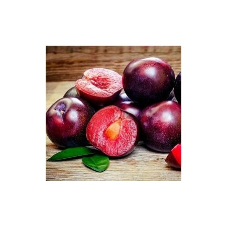 Strawberry Red Plum 1 kg (ciruelo)