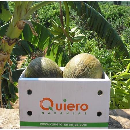 Pastèque Biologiques 1 ou 2 unités et Melons biologiques 1 ou 2 unités  -  9-11 kg