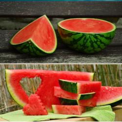 Bio-Wassermelonen, 3-4...