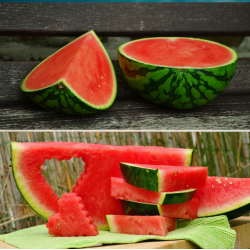 Organic  Watermelons 3 to 4...