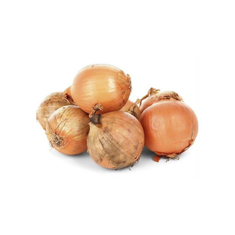 Oignon Bio 5 kg (cebolla)