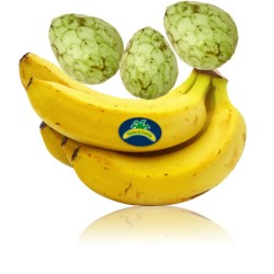 Organic Bananas and Custard...
