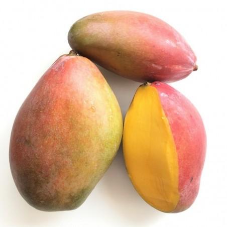 Frutas Ecológicas 3 - Plátanos, Mangos, Manzanas: 5 kg (plátanos, mangos, manzanas)