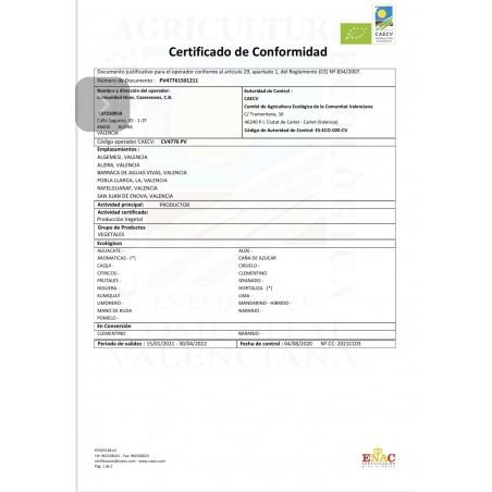 """Calabaza """"Butternut"""" Ecológica 600  g - 1 kg"""