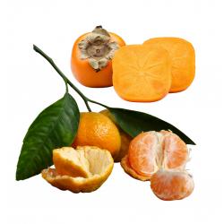 Mandarines bio 7 kg, Kakis...