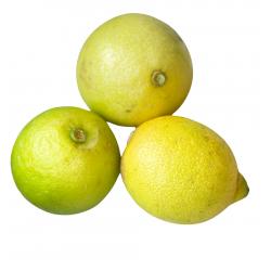 Bio-Zitronen 20 kg