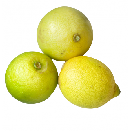 Organic Lemons 20 kg
