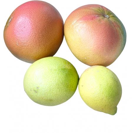 Bio-Grapefruits, Zitronen 5 kg  (pomelos y limones)
