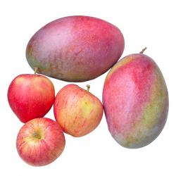 Bio-Früchte: Mangos, Äpfel...