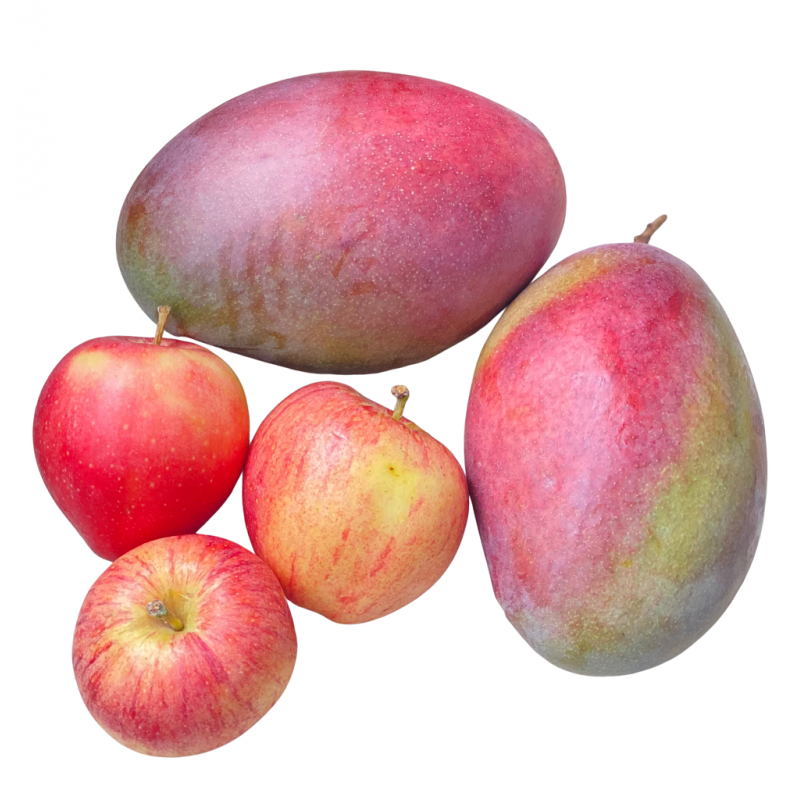Bio-Früchte: Mangos, Äpfel (insgesamt 5 kg) (Mangos y Manzanas)