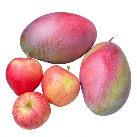 Fruits écologiques: Mangues, Pommes, écologiques  5 kg (Mangos y Manzanas)