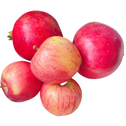 Organic Fruits...