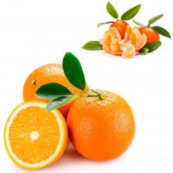Naranjas Ecológicas de Mesa 10 kg, Mandarinas 5 kg
