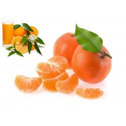 Naranjas Ecológicas de Mesa y Zumo 15 kg, Mandarinas 5 kg
