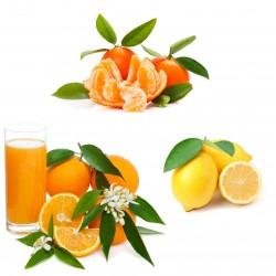 Spéciales Oranges...