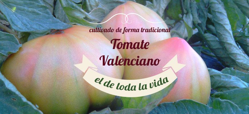 Tomates de Valencia
